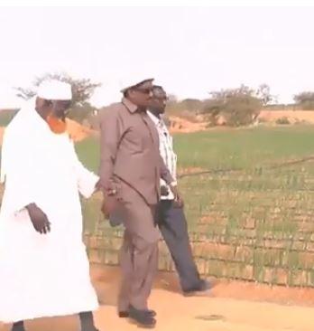 Daawo: Wasiirka Horumarinta Beeraha Somaliland oo kormeeray Beerta Sh Adan EWADA iyo Beero kale oo ku yaalla Gobolka Togdheer