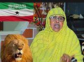 Xukumada Somaliland Maxay Ka Tidhi Libaaxyada Hargeysa Dadka Ku Cunay