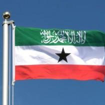 Hargaysa:-Somaliland Oo Dad Ajaaniba Dalka Ka Mastaafurisay+Tirada Dadka La Mastaafuriyey Iyo Wadamada Ay Kasoo Jeedaan