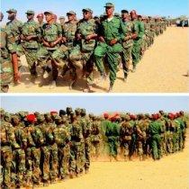 Dagaal Culus Oo Wali ka Socda Deegano Hoos Ymada Degmada Ceel-afwayn Iyo Ciimada Qaranka Somaliland