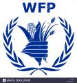 Hargaysa:-WFP Oo Mucaawino Gaadhsiisay Dadkii Ku Baro Kacay Rabshadihii Jigjiga Ka Dhacay -