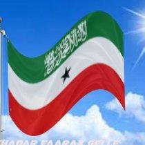 """Saameynta Isdhexgalka Gobolka Ee Somaliland """"The Impact Of Regional Integration In Somaliland"""""""