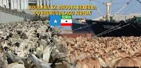 Gudaha:-Dawlada Sucuudiga Oo Xoolihii Somaliland ku Xidhay Shuruud Aday Iyo Shacabka Somaliland Oo Dayro Ka Taagan Xukuumadii Ay Soo doorteen.