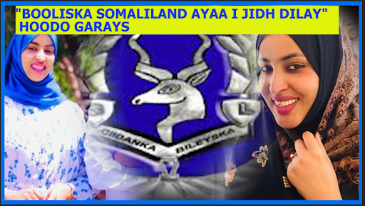 Suxufi Fashilayay Xog Iyo Macluumaad Ku Sahabsan Tacadi Iyo Jidh-dil Ciidamada Booliska Somaliland U Gaysteen Hoodo Garays Iyo Hooyadeed.