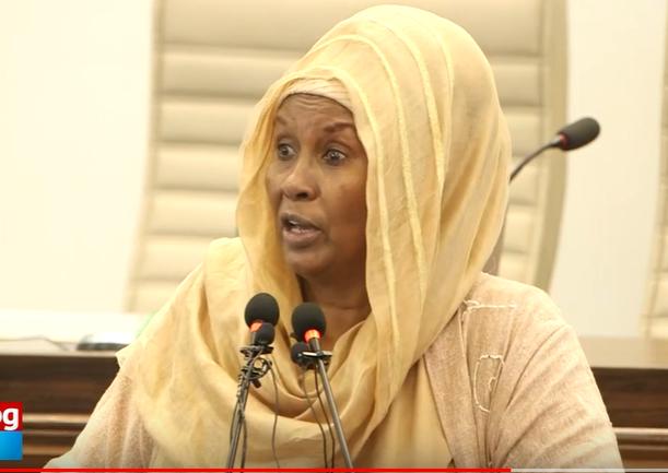 Xildhibaan Sahra Malin ''Sharcigaan waxay ahayd in lagu noqdo maadaama uusan dheelitirnayn''