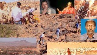 Gudaha:-Warbixin: Dhagax-boqor, dhulka Dahabka, macdanta iyo Dooxa Waaheen.