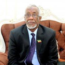 Wasiirka Arimaha Dibada Somaliland Oo Gaadhay Wadanka Niger Oo Hogaamiyeyaasha Afrika Ku Shirayaan