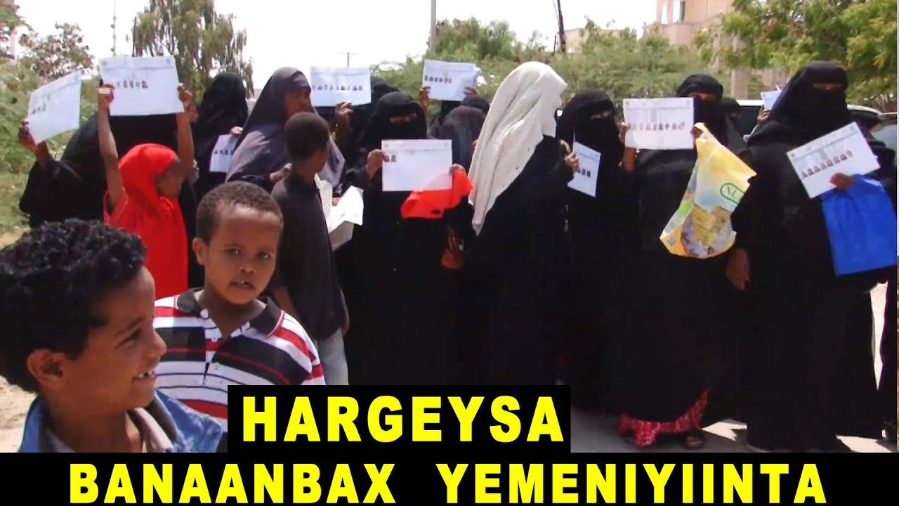 Qaxoontiga Yemeniyiinta Ah Ee Hargeysa Ku Nool Oo Bannaan-bax Sameeyay Iyo Jawaabta Xukuumadda Somaliland.