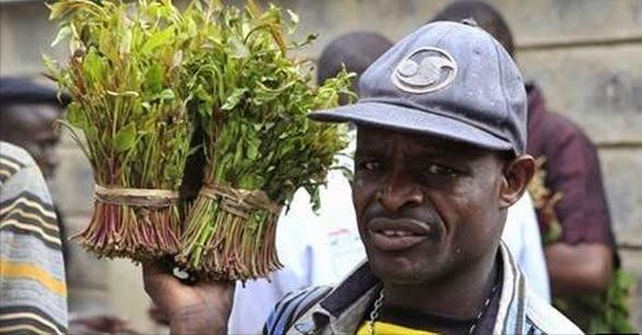 Kenya:-Ganacsatada Qaadka Wadanka Kenya U Hanjbay Somaliya Iyo Ujeedada Hanjabadooda