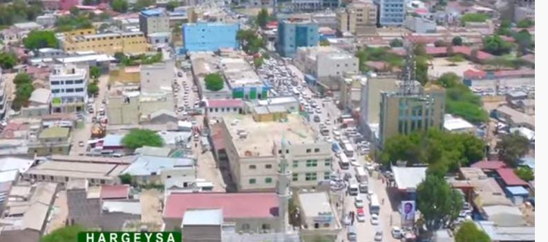 Daawo: Wargays Caalamiya Oo Soo Bandhigay In Somaliland Dunida Barayso Sida Nabada Loo Dhiso