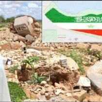 Gudaha:- War Naxdin leh, Tirada Dad dhintay Somaliland Oo Ehelkoodii la Baafinaayo+Sababta Ka Danbaysa.
