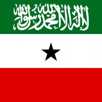 Gudaha:-Somaliland Oo Shaacisay Tirada Ajaanib Ay Dalka Ka Saartay Iyo Kuwo Ay Ruqsad Shaqo Siisay.