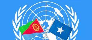 Hargeisaa:-Qaramadda Midoobay Oo War Kasoo Saartay Saldhiga Military Ee Imaaraadku Ka Dhisanaayo Berbera.