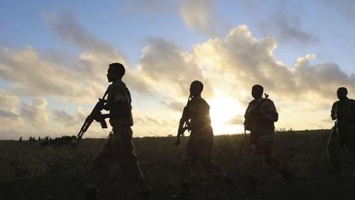 Somalia:-Dowladda Soomaaliya oo diyaar u ah in ciidamo nabad-ilaalin ah u dirto dalka Koofurta Sudan