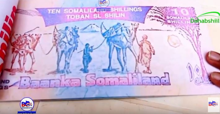 Gudaha:-Buug Ka Samaysan Lacagta Shilinka Somalilnad oo Lagu Soo bandhigay Burco Book Fair.