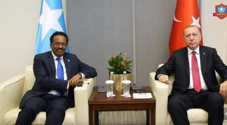 DEG-DEG Madaxweynaha Turkey Receb Tayib Erdogan Oo u Mahad celiyay MD Farmaajo +Sababta