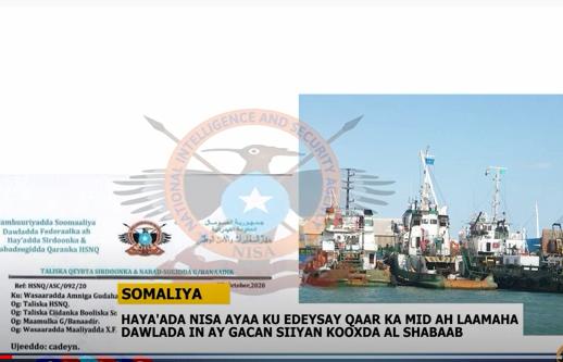 Hay'adda Nisa Oo Ku Eedeysay Qaar Ka Mida Laamaha Dawlada Somaliya Inay Gacan Siiyaan Al-Shabaab