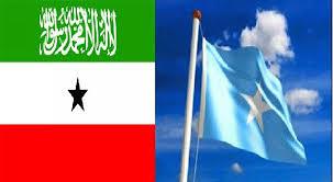 Hargaysa:-Wada Hadalkii Somaliland Iyo Somaliya Oo Dib U Furmaya Turkiga Oo Laga Takooray Kaalintu Ku Laha Iyo Dawlado U Tartamaaya Marti Gelinta Shirkaasi