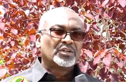 Hargeysa: Daawo Wasiirkuxigenka Warfaafinta Somaliland oo sheegay inu kursiga Xildhibaanimo ee Bannaan isagu leyahay