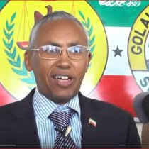 DAAWO Wasiirka Arimaha Dibada Somaliland Oo Kulan Deg Dega La Qaatay Gudida Joogtada Goolaha Wakiilada Somaliland.