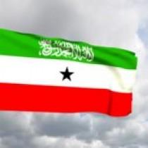DAAWO Madaxweynaha Somalia Oo Sheegay In Aanay Samaliland Kaligeed Is-Bixin Karin Kana Hadlay Iyo Sababta Uu Sheegay.