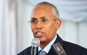 Wasiir Sacad Oo Sheegay Inay Somaliland Ka Feejigantahay Xaasaasiyada Ay Leedahay Siyaasadda Biyaha Niilku.