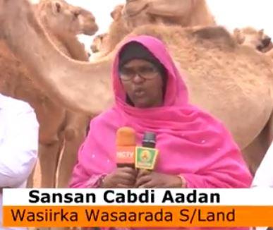 Daawo;wasiirka Maliyada Somaliland Marwo SamSam Oo So Kor Mertay Riiga Biyood Laga Hir Galiyay Ceel Biyodka Qool Cade.
