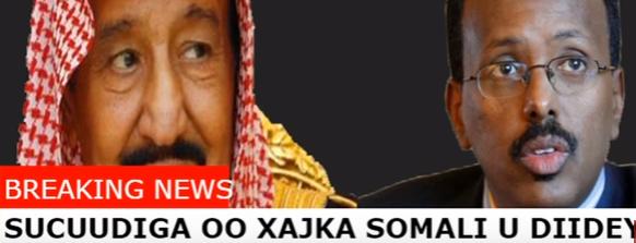 DEG DEG :Sucuudiga oO Soomaaliya Iyo 6 dal oo kale ka Mamnuucay xajka sanadkani,
