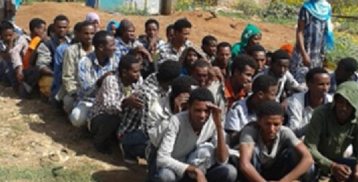 Qaxoonti Badan Oo Ka Soo Qul-Qulaya Dalka Itoobiya Oo Ka Soo Talaabaya Xuduuda, Somaliland, Qaylo Dhaanta Shacabka Iyo Mooganaanta Xukuumadda