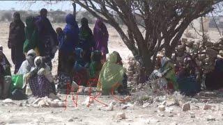 Daawo;Barakacayaasha Ku Dhaqan Gobolka Sanaag Oo Cabasho Xoogan Ka Muujiyay Haay'adda NRC.